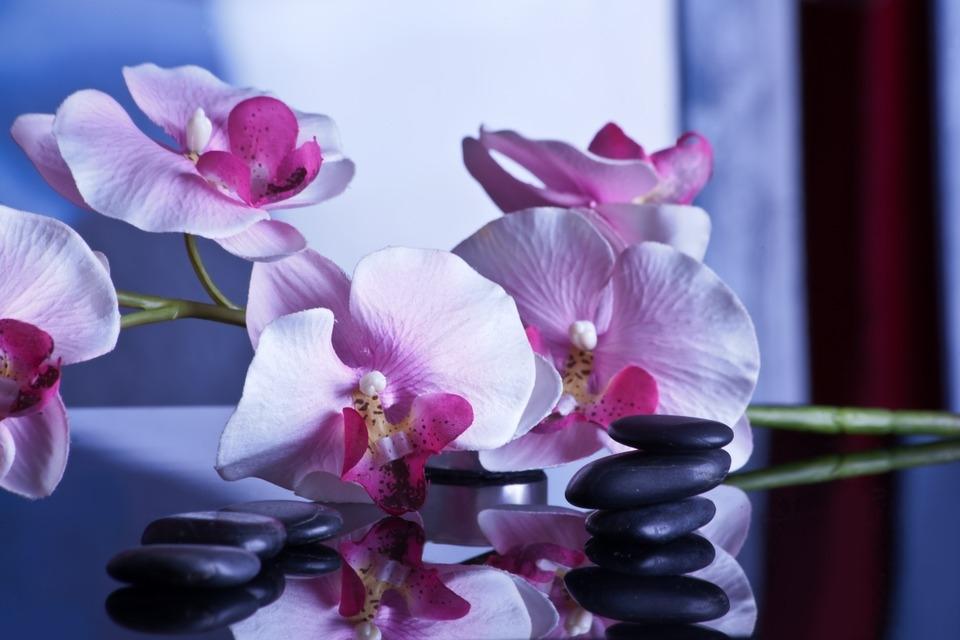 massage-599505_960_720